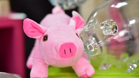 The St Elizabeth Hospice is appealing for pig-related donations as part of the Pigs Gone Wild projec