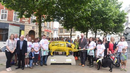 Official launch of the Pigs Gone Wild Trail in Ipswich
