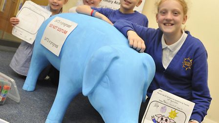 Pupils at Sprites Primary School have a junior pig named Mudlet that they have painted as part of Pi
