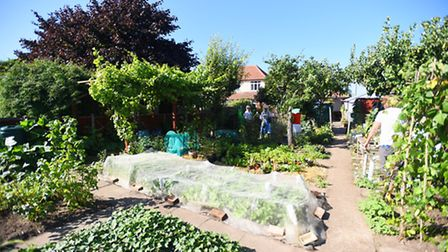 """Prema Leathers is opening up her """"exotic"""" garden for people to visit and donate to Headway Suffolk."""