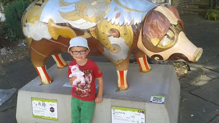 Richard and Debbie Mayhew's grandson Jaxon enjoyed the Pigs Gone Wild trail. The couple made a �500