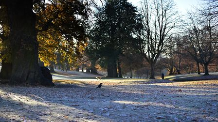 Christchurch Park in Ipswich was covered in a blanket of white on Wednesday November 30 as Suffolk e