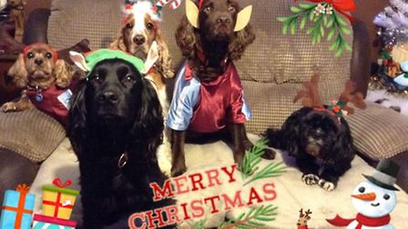 Everyone getting into the spirit. By Donna Holmes