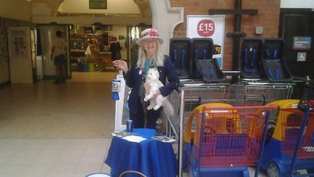 Lucky the cat has been stolen from the RSPCA charity shop in Felixstowe.