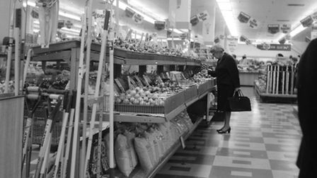 The gardening section of Woolworths, September 1971
