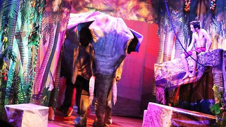Oddsocks Productions stage the Jungle Book. Photo: Contributed