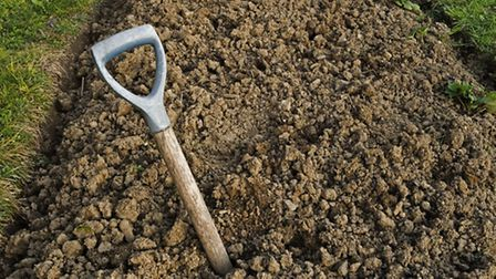 Suffolk Mind has started a Get Up and Grow allotment project (stock image)