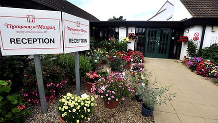 Ipswich based seed firm Thompson & Morgan has been sold
