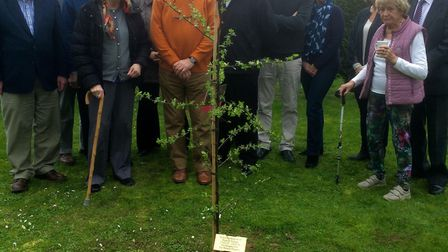 David du Boulay (third left) and the Masque Players Amateur Dramatic Group plant a tree in memory of