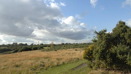 Rushmere Heath has a rich history. Picture: SARAH LUCY BROWN