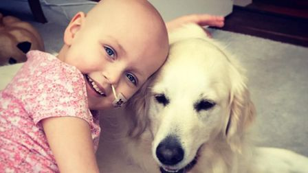 Ipswich cancer sufferer Hayley Bendall, five, with the family's golden retriever. Picture: CASSIE BE