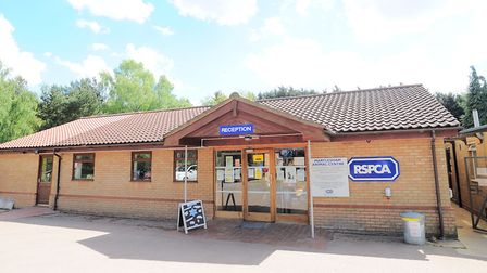 The RSPCA centre in Martlesham is appealing to animal lovers on the look out for a new pet. Picture: