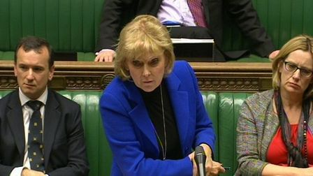 Tory Remainer Anna Soubry is calling on MPs to stop a hard Brexit. Photo: PA