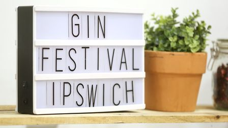 The national gin festival at Ipswich Town Hall. Picture: RICHARD MARSHAM/RMG PHOTOGRAPHY