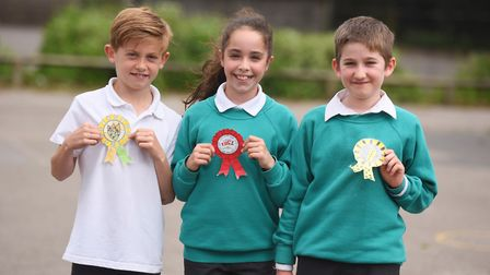 Sidegate Primary School in Ipswich has been running a school-wide election project since the snap el
