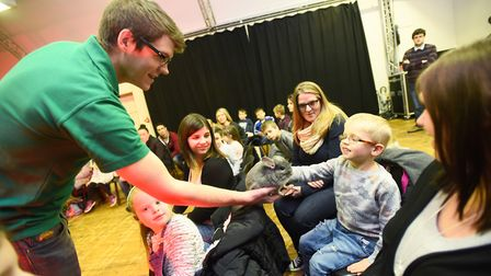Real animals at Ipswich Museum. Children get up close to fluffy, scaly or creepy crawly creatures in