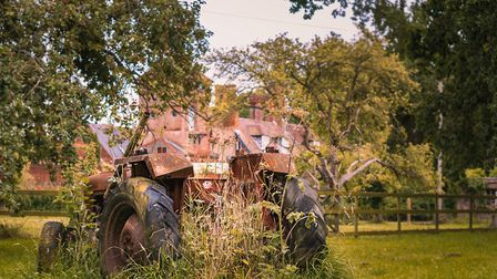 An old tractor being taken over by nature. Picture: JP APPLETON