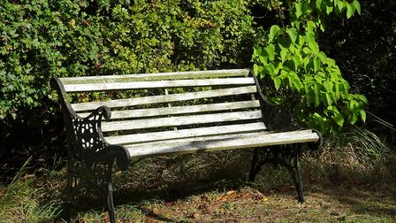 This seat in our garden is in need of some TLC, but still one of our favourite places to sit. Pictur