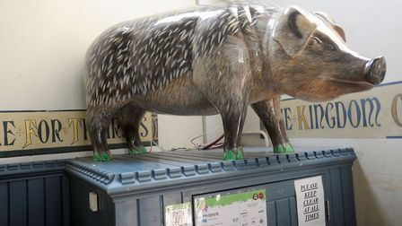 Valerie Osment, the artist who created Hedgepig for the Pigs Gone Wild trail in Ipswich, has died. P