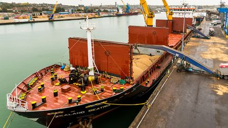 Zealand Beatrix, being loaded with 12,000 tonnes of beans, on Cliff Quay at ABP's Port of Ipswich.