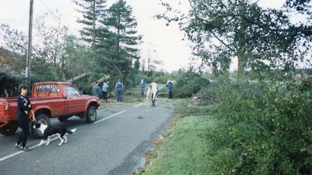 The Great Storm of 1987, the morning after. Picture: PAUL NICHOLS