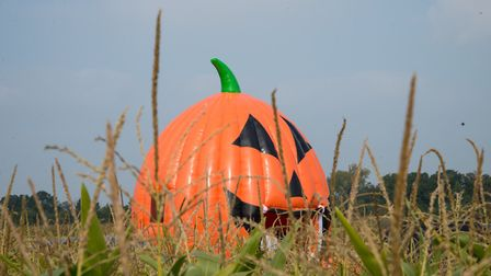 Enjoy Halloween in Ipswich with these six events. Picture: ARCHANT