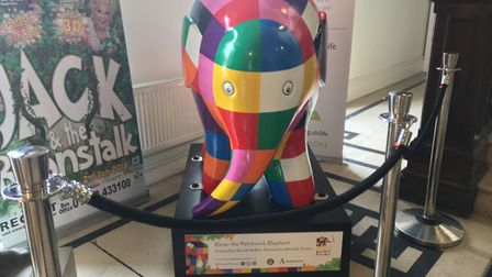 Elmer the patchwork elephant is currently being displayed in the Town Hall. Picture: MEGAN ALDOUS