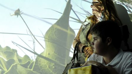 Pupils and visitors enjoying the immersive experience. Picture: SARAH LUCY BROWN