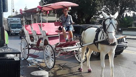 Some of the gropup went for a horse and carriage ride throughout the French Quarter in New Orleans.