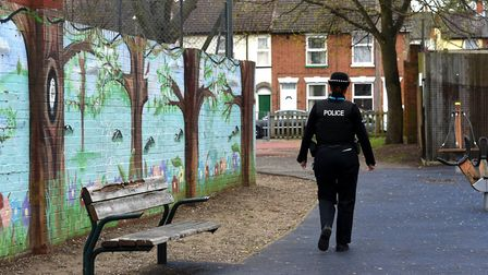 Jubilee Park in Ipswich is one of the areas affected by gang problems. Picture: ARCHANT
