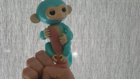 Fake Fingerlings were seized in Ipswich. Picture: SUFFOLK COUNTY COUNCIL