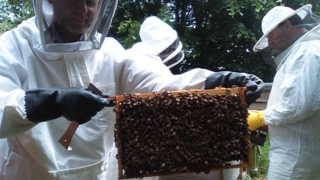 ActivLives beekeeper Danny Thorrington. Picture: ACTIVLIVES