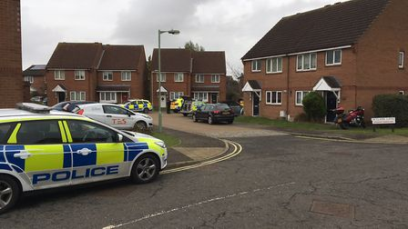 There was a heavy police presence in Skylark Lane, Ipswich, while armed officers dealt with a stand-