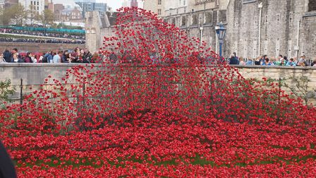 The Blood Swept Lands and Seas of Red project at The Tower of London. Picture: JESSICA BALAAM