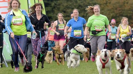 Pet owners can sign up for Dog Jog, to be held in Christchurch Park, Ipswich, on September 1. Pictur