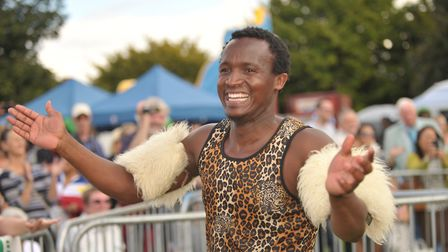 The One Big Multicultural Festival in Ipswich's Alexandra Park. Picture: SARAH LUCY BROWN