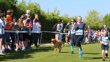 The Alton Water Run 2k event. Picture: ROSEMARY BUTLER
