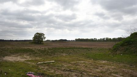 Land adjacent to BT Adastral Park in Martlesham is to be developed Picture: SARAH LUCY BROWN