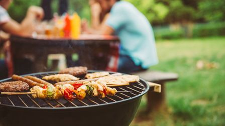 A barbecue will be one of the attractions at a charity fun day at the Brewers Arms pub this weekend.