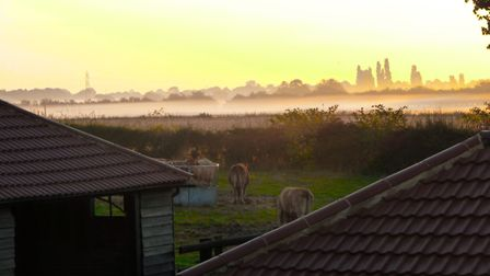 Mist in the morning Picture: ANGELA GOODWIN
