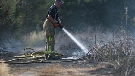 Suffolk firefighters tackling a wildfire (file image) Picture: PAVEL KRICKA