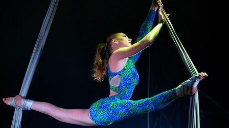 A trapeze performer shows her skills Picture: MIKE KWASNIAK