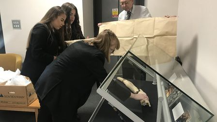 Pupils preparing the woolly mammoth display at Stoke High School Picture: GEMMA MITCHELL