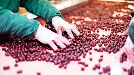 The food sector is among forms of employment linked with fears of modern day slavery Picture: GETTY