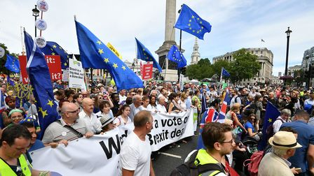 Vince Cable MP, Pro-EU campaigner Gina Miller, Tony Robinson and Caroline Lucas MP join with crowds