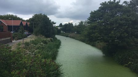 The body was pulled from the river Gipping Picture ARCHANT