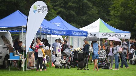 A wildlife-themed fun day will be held at Chantry Park. Picture: GREGG BROWN