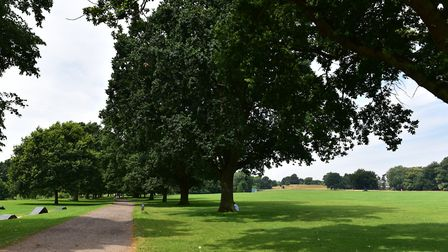 Bourne Park in Ipswich on a summer's day. Picture: SARAH LUCY BROWN