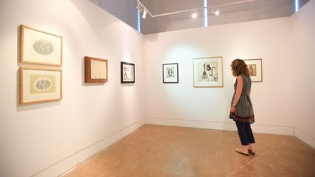 Ipswich Art Gallery will be open for Heritage Open Days. Picture: GREGG BROWN