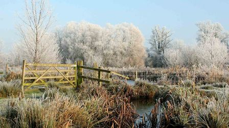 Frost on a beautiful winter morning on Framlingham mere.
